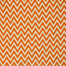 Roasted Orange Decorator Fabric by Silver State