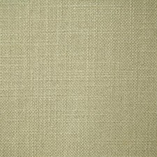 Cactus Solid Decorator Fabric by Pindler