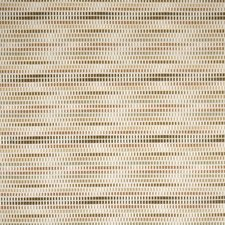 Mojave Decorator Fabric by Silver State
