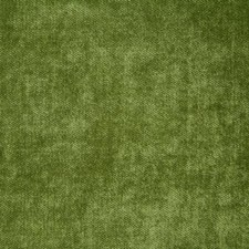 Grass Solid Decorator Fabric by Pindler