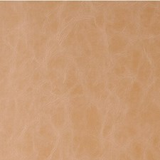 Buckskin Solids Decorator Fabric by Kravet
