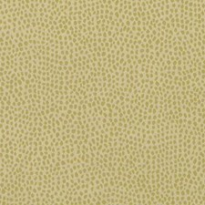 Leaf Dots Decorator Fabric by Duralee