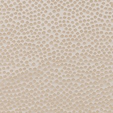 Champagne Dots Decorator Fabric by Duralee