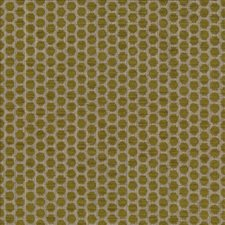 Sprout Decorator Fabric by Kasmir