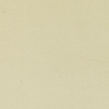 Sand Faux Leather Decorator Fabric by Duralee