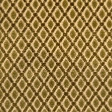 Rose/Vert Decorator Fabric by Scalamandre