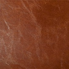 Brown Animal Skins Decorator Fabric by Kravet