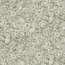 Sterling Botanical Decorator Fabric by Kravet
