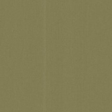 Sage Green Decorator Fabric by RM Coco