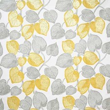 Lemon Contemporary Decorator Fabric by Pindler