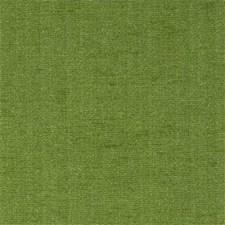Kiwi Solid Decorator Fabric by Clarke & Clarke