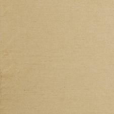 Gold Solids Decorator Fabric by Clarke & Clarke