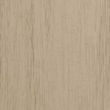 Khaki Solids Decorator Fabric by Clarke & Clarke