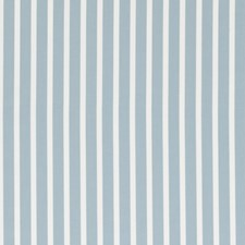 Duckegg Stripes Decorator Fabric by Clarke & Clarke