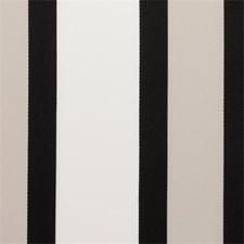 Charcoal Stripe Decorator Fabric by Clarke & Clarke