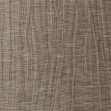 Espresso Solid Decorator Fabric by Clarke & Clarke