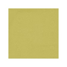Citrus Solids Decorator Fabric by Clarke & Clarke