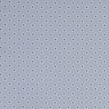 Stars Chambray Decorator Fabric by Clarke & Clarke