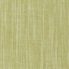 Citrus Solids Decorator Fabric by Clarke & Clarke