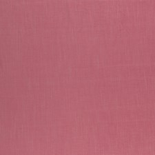 Rose Solids Decorator Fabric by Clarke & Clarke
