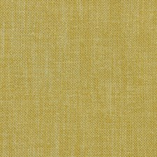 Honey Solids Decorator Fabric by Clarke & Clarke