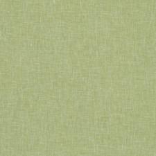 Apple Solids Decorator Fabric by Clarke & Clarke