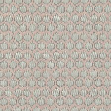Blush Weave Decorator Fabric by Clarke & Clarke