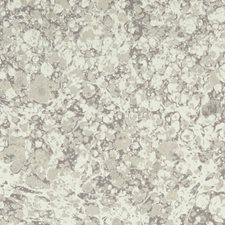 Stone Weave Decorator Fabric by Clarke & Clarke