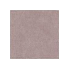 Blush Velvet Decorator Fabric by Clarke & Clarke