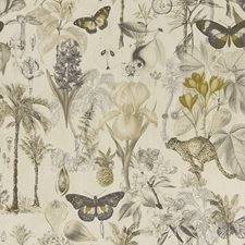 Charcoal/Chartreuse Decorator Fabric by Clarke & Clarke