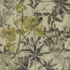 Charcoal/Charteuse Decorator Fabric by Clarke & Clarke