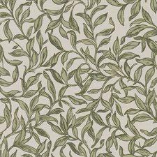 Willow Decorator Fabric by Clarke & Clarke