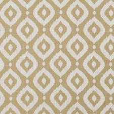 Ochre Decorator Fabric by Clarke & Clarke