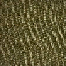 The Vert Decorator Fabric by Scalamandre