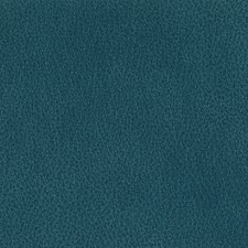 Cove Decorator Fabric by Silver State