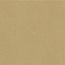 Praline Solids Decorator Fabric by Kravet