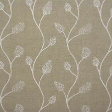 Natural/White Contemporary Decorator Fabric by Groundworks