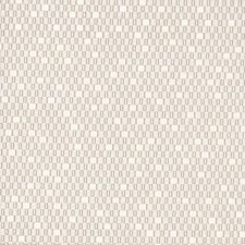 Gris Decorator Fabric by Scalamandre