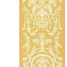 Beige/Gold Decorator Fabric by Scalamandre