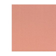 Mangue Decorator Fabric by Scalamandre