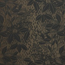 Encens Decorator Fabric by Scalamandre