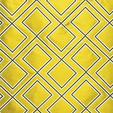 Limone Decorator Fabric by Scalamandre