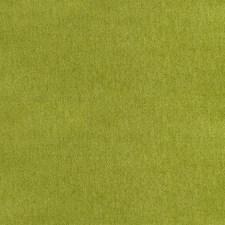 Kiwi Decorator Fabric by Silver State
