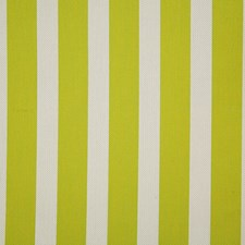 Limeade Stripe Decorator Fabric by Pindler