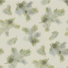 Spring Botanical Decorator Fabric by Kravet