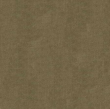 Birch Solids Decorator Fabric by G P & J Baker