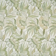 Isle Breeze Decorator Fabric by Kasmir