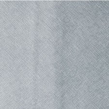 Silver Moon Metallic Decorator Fabric by Kravet