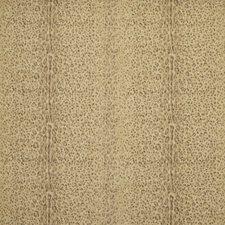 Driftwood Decorator Fabric by Ralph Lauren