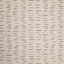 Daylight Decorator Fabric by Pindler